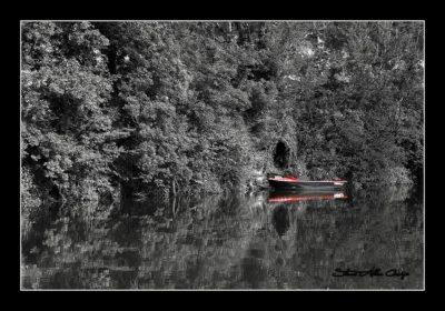 Soizic-Steve Allan Cerigo – Scoophoto -Photographe Artistique- Photographe de mariages- portraits-reportages-studio. France- Charente Maritime- Royan-Saintes-La Rochelle- Cognac-Grandjean-Saint Jean d'Angely- 17- Poitou Charentes-promenade