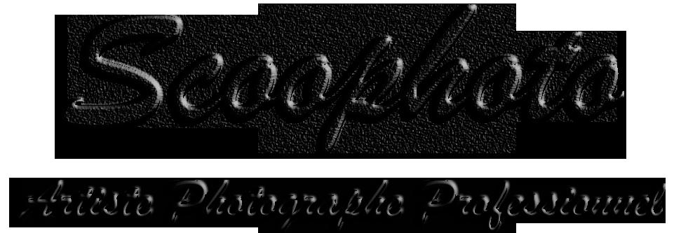 Scoophoto